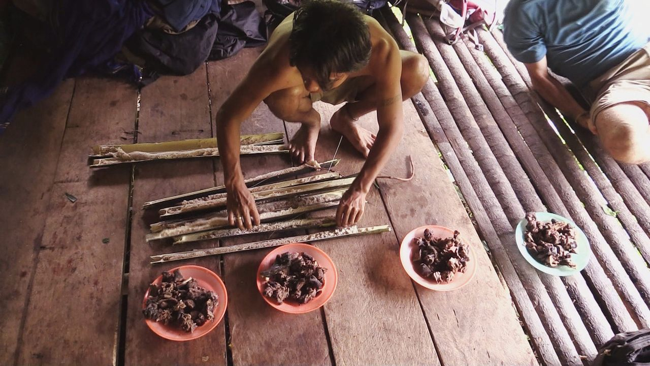 Sumatra 12 - Bildquelle: kabel eins