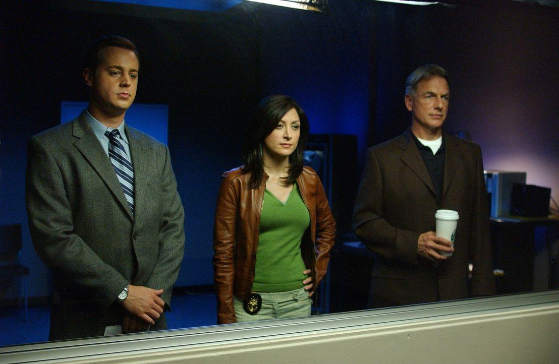 Gibbs (Mark Harmon, r.), McGee (Sean Murray, l.) und Kate (Sasha Alexander, M.) ermitteln auf dem Campus um den Mord an einem Studenten zu klären ... - Bildquelle: CBS Television