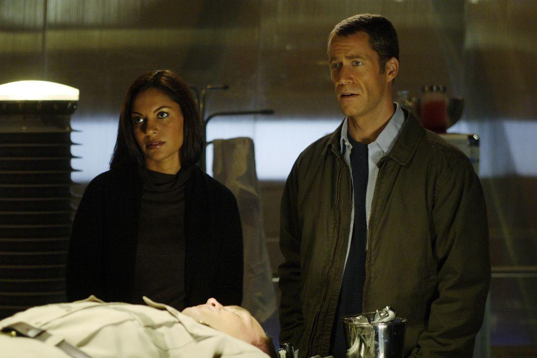 Können nicht glauben, wer der neue Sheriff von Eureka ist: Allison (Salli Richardson, l.) und Jack (Colin Ferguson, r.) ... - Bildquelle: Universal Television