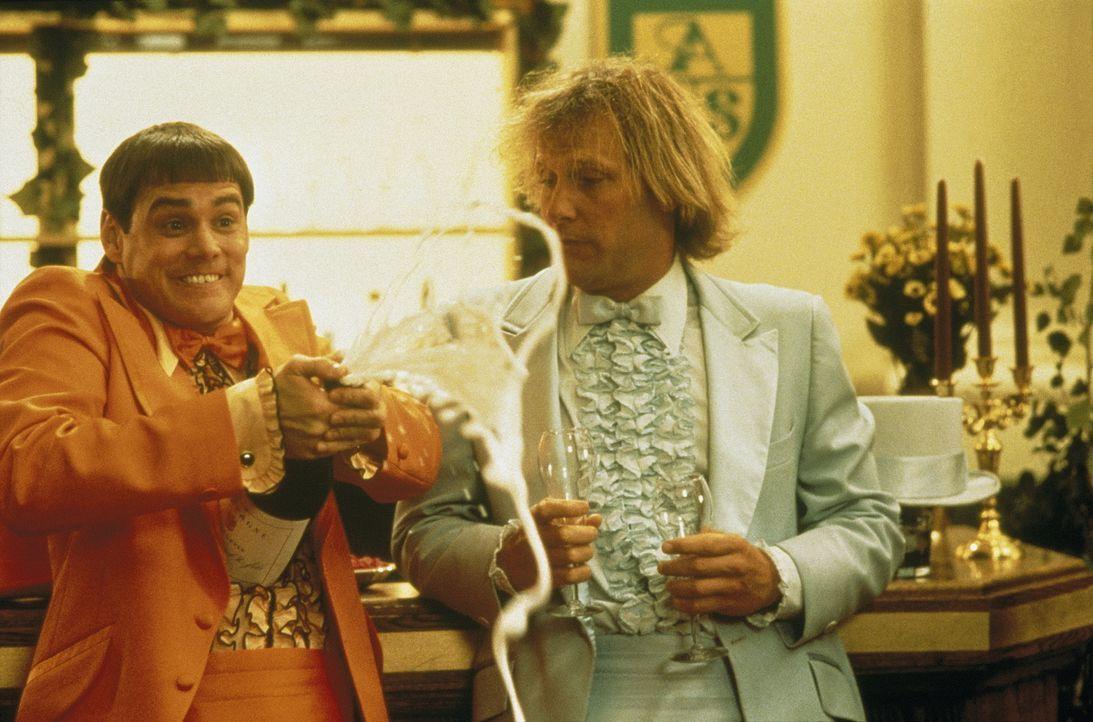 Sind die beiden noch zu retten: Harry (Jeff Daniels, r.) und Llyod (Jim Carrey, l.) ... - Bildquelle: New Line Cinema