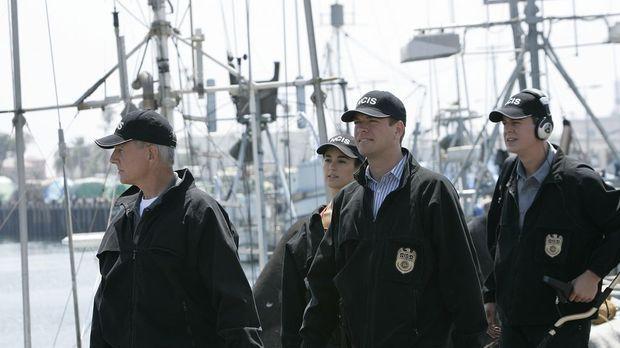 Navy Cis - Navy Cis - Staffel 5 Episode 4: Eine Falsche Identität