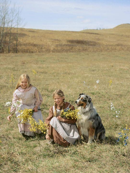 Mit dem treuen Familienhund Jack an ihrer Seite fühlen sich Laura (Kyle Chavarria, r.) und Mary (Danielle Chuchran, l.) immer wohlbehütet ... - Bildquelle: ABC, Inc.