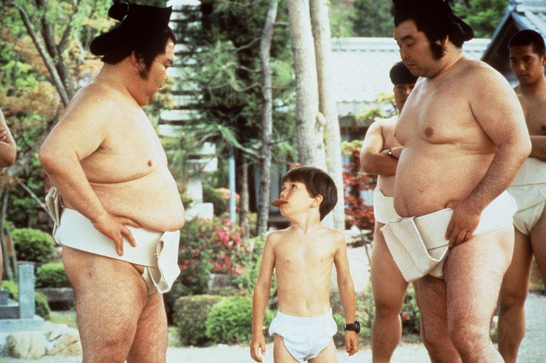Der kleine Tum Tum (Evan Bonifant, M.) mischt sich furchtlos unter die Sumo-Kolosse ... - Bildquelle: Columbia TriStar