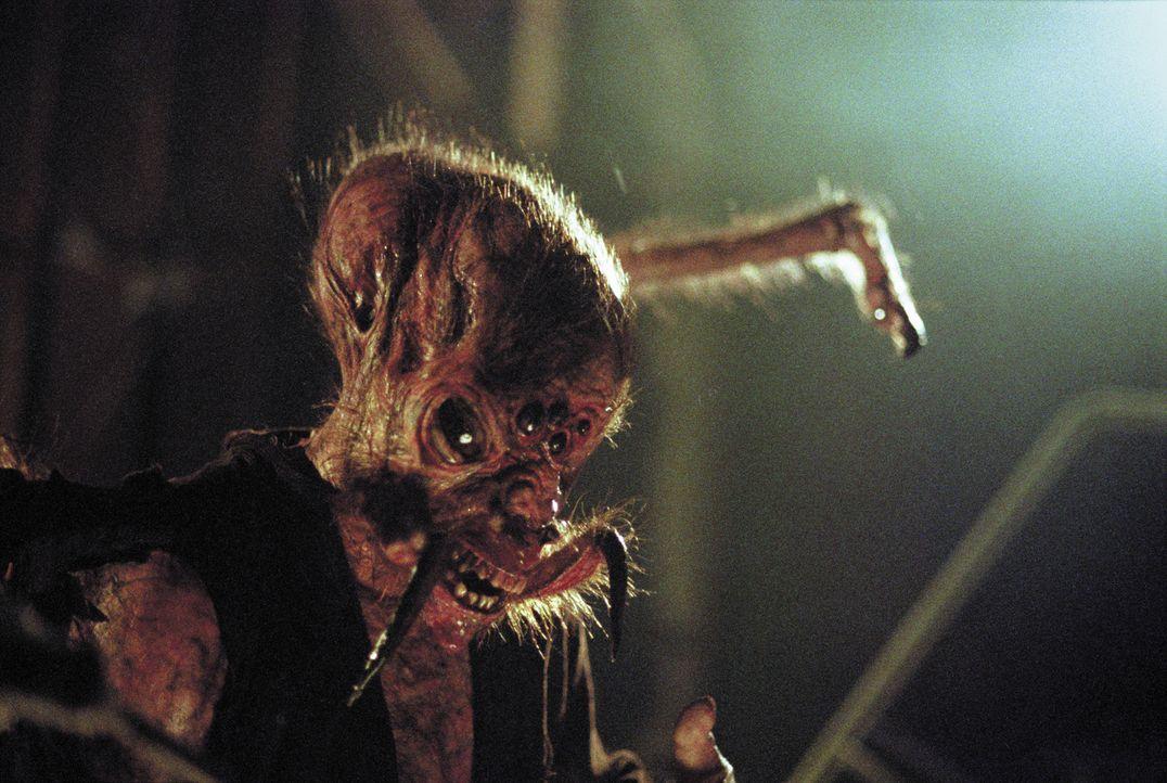 Arachno-Quentin (Devon Gummersall) beginnt Amok zu laufen - und wird zur Gefahr für alle, die ihm nahe stehen und für die, mit denen er noch eine... - Bildquelle: 2003 Sony Pictures Television International. All Rights Reserved.