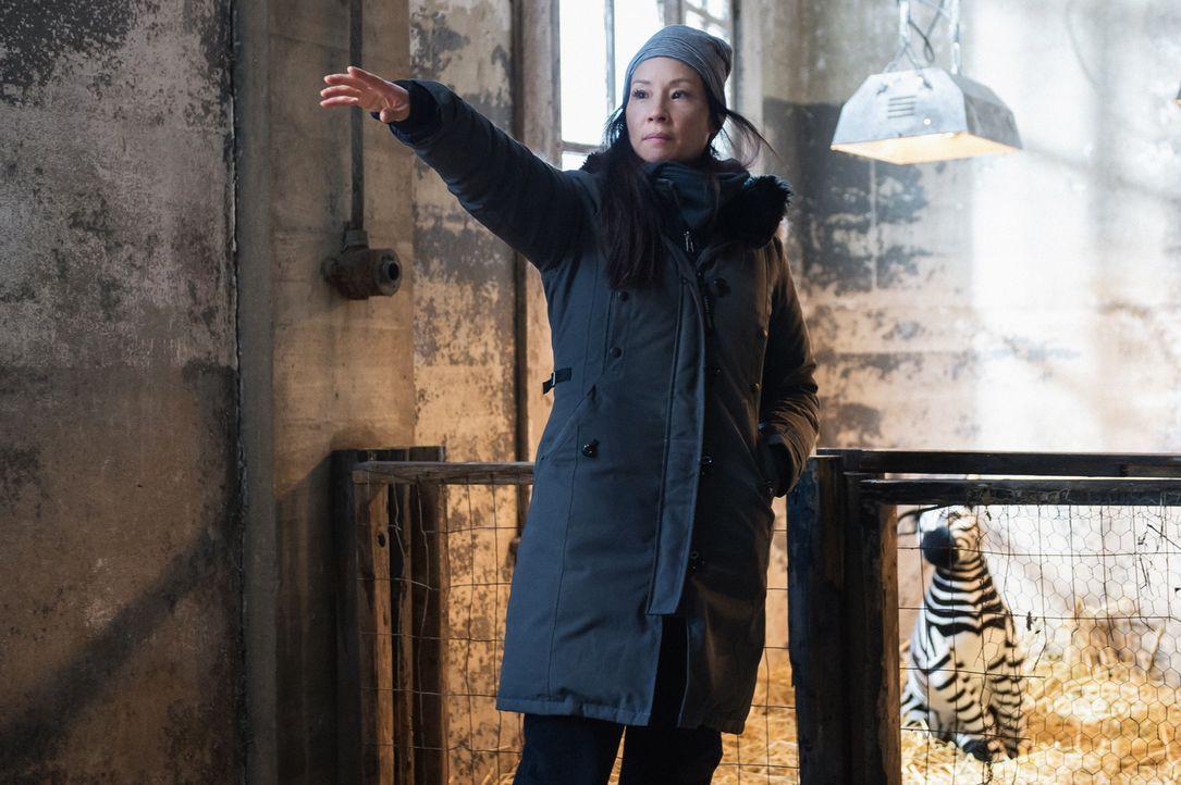 Während Holmes mit der Aufklärung eines Diebstahls in einem Zoo beschäftigt ist, muss sich Watson (Lucy Liu) um einen persönlichen Fall kümmern ...... - Bildquelle: CBS Television