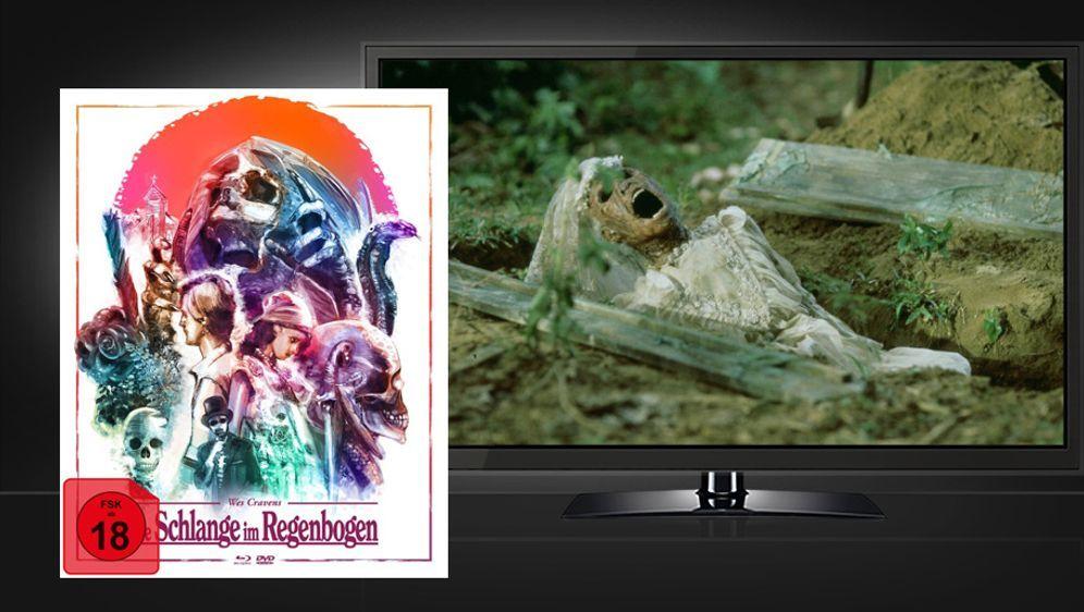 Die Schlange im Regenbogen (Blu-ray+DVD Mediabook) - Bildquelle: Koch Media