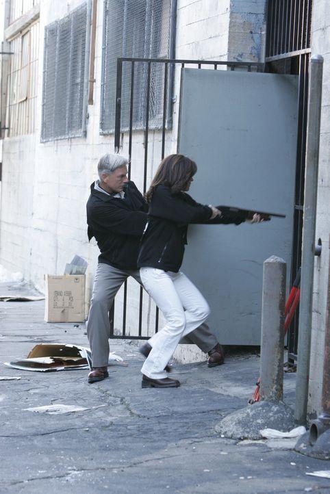 Ari ist wieder in der Stadt und diesmal hat er sich das Ziel gesetzt Gibbs (Mark Harmon, l.) zu töten. Kate (Sasha Alexander, r.) erhält den Auftrag... - Bildquelle: CBS Television
