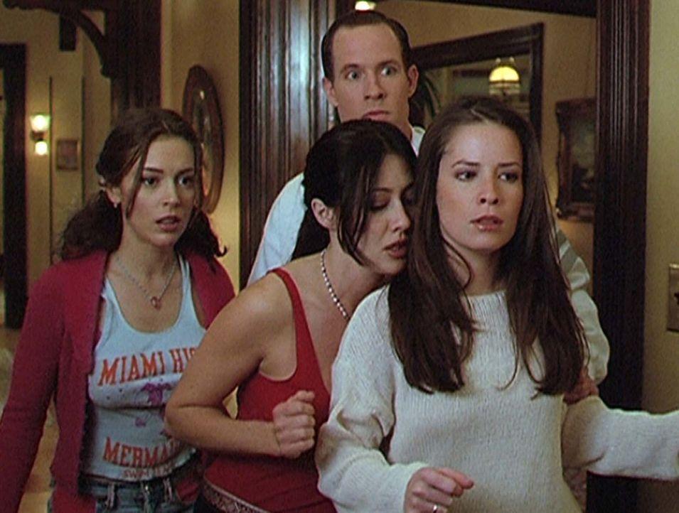 (v.l.n.r.) Phoebe (Alyssa Milano), Prue (Shannen Doherty) und Piper (Holly Marie Combs) sind ziemlich verwirrt, denn nicht nur Billy (Chris Payne Gi... - Bildquelle: Paramount Pictures