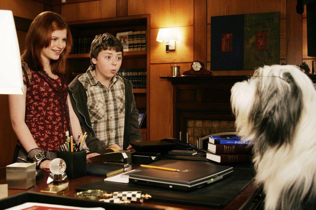 Das Leben als Hund hat auch etwas Gutes: Mit einem Mal sieht Wilby seine Frau Rebecca und seine Kinder Josh (Spencer Breslin, M.) und Carly (Zena Gr... - Bildquelle: Disney Enterprises, Inc. All rights reserved