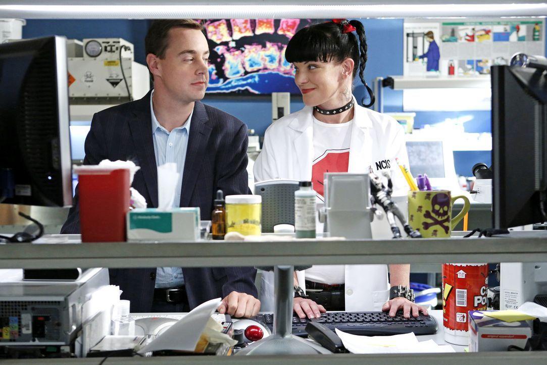 Ein neuer Fall wartet auf Abby (Pauley Perrette, r.) und McGee (Sean Murray, l.) ... - Bildquelle: CBS Television