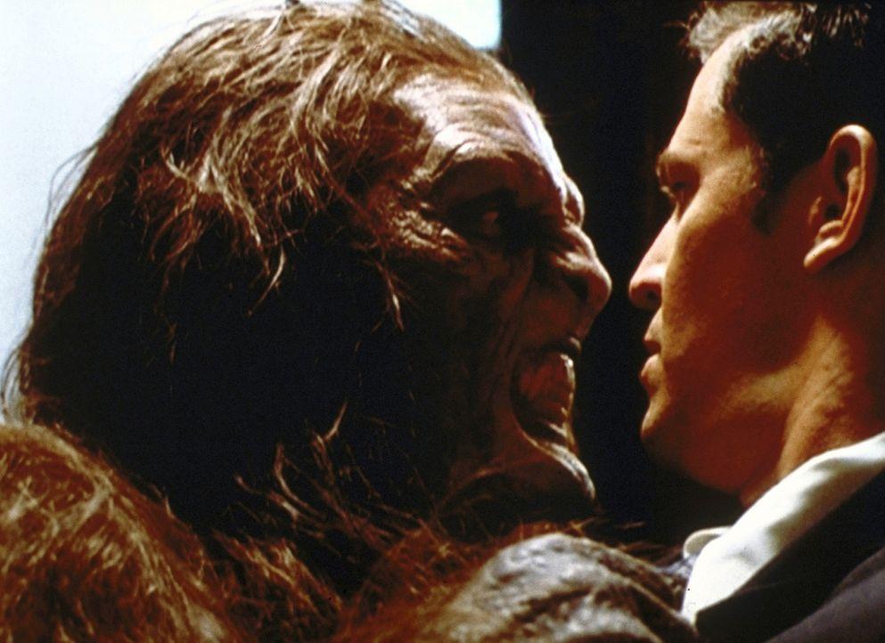Piper (Holly Marie Combs, l.) hat sich in einen Wendigo verwandelt. Andys (T. W. King, r.) Schicksal scheint besiegelt zu sein ... - Bildquelle: Paramount Pictures