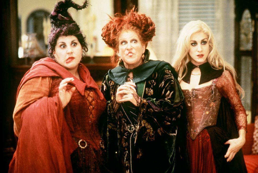 Nach 300 Jahren auf dem Friedhof finden sich die Hexen (v.l.n.r.) Mary (Kathy Najimy), Winifred (Bette Midler) und Sarah (Sarah Jessica Parker) in d... - Bildquelle: The Walt Disney Company