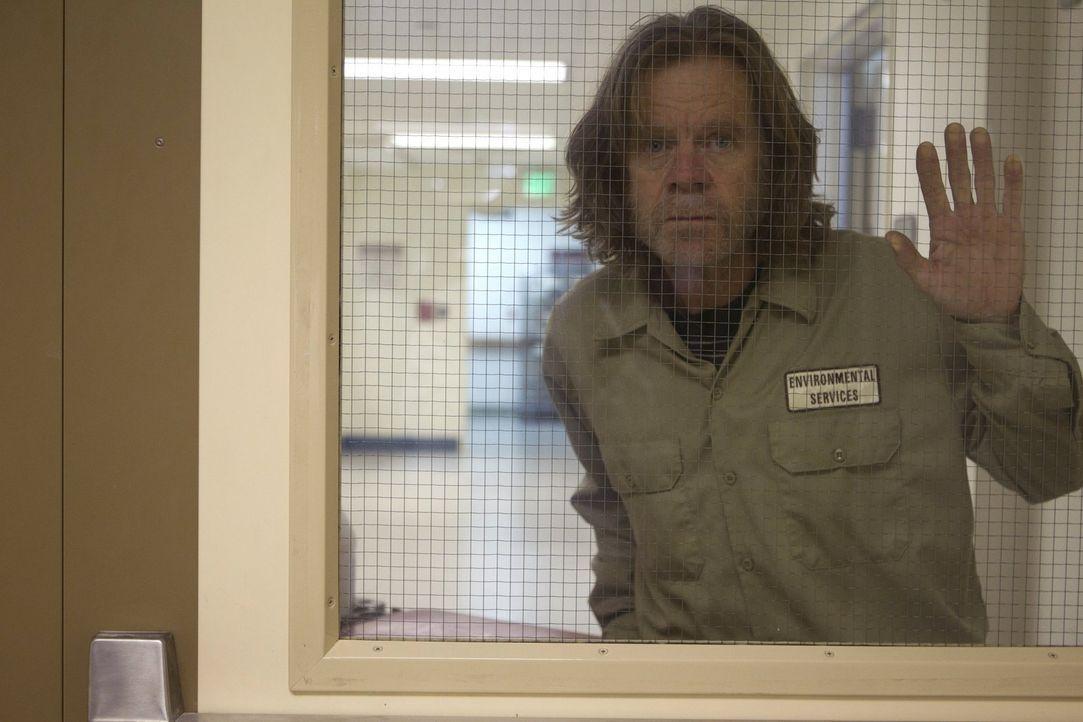 Monica hat einen Selbstmorderversuch hinter sich, der sie in die Psychatrie befördert. Jetzt muss Frank (William H. Macy) ran, um seine Frau zu befr... - Bildquelle: 2010 Warner Brothers