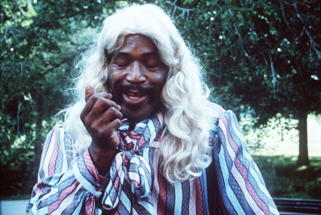 Hightower (Bubba Smith) hat sich für einen Einsatz als Hippie verkleidet ... - Bildquelle: Warner Bros.