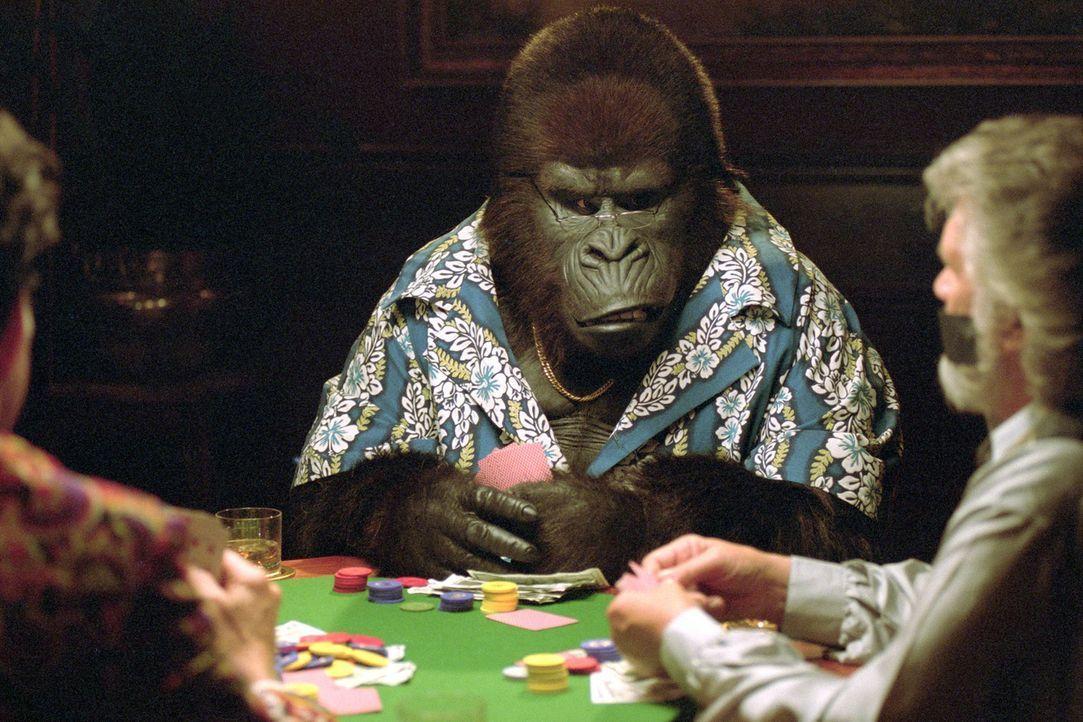 Einen sprechenden Gorilla, der Karten spielt gibt es nicht? Weit gefehlt! - Bildquelle: Walt Disney Pictures