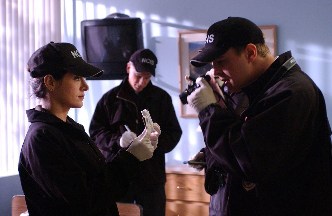 Auf seltsame Weise explodiert ein Commander im Navy-Krankenhaus und stirbt. Gibbs (Mark Harmon, M.), Tony (Michael Weatherly, r.) und Kate (Sasha Al... - Bildquelle: CBS Television