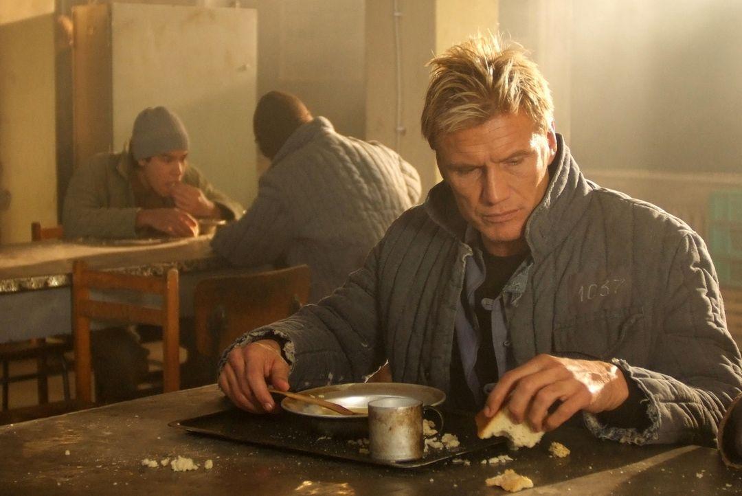 Der Ex-Marine Mike Riggins (Dolph Lundgren) macht im Ostblock geheime Waffengeschäfte, bis er im Gefängnis landet. Seine Chancen, dort je lebendig h... - Bildquelle: Nu Image
