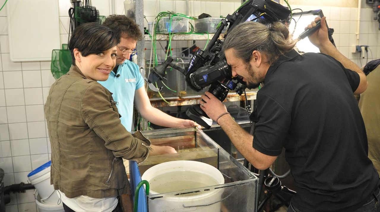 Sea life Kathy Weber - Becken - Bildquelle: Janus TV