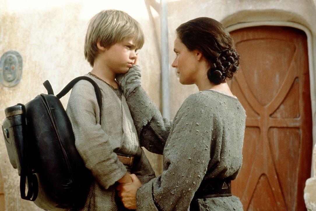 Den Jedi-Rittern gelingt es, den überaus begabten Anakin Skywalker (Jake Lloyd, l.) aus seinem Sklavendasein zu befreien. Schweren Herzens muss das... - Bildquelle: 1999 Lucasfilm Ltd. & TM All rights reserved Used with permission