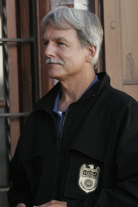 Versucht einen neuen Fall zu lösen: Gibbs (Mark Harmon) ... - Bildquelle: CBS Television