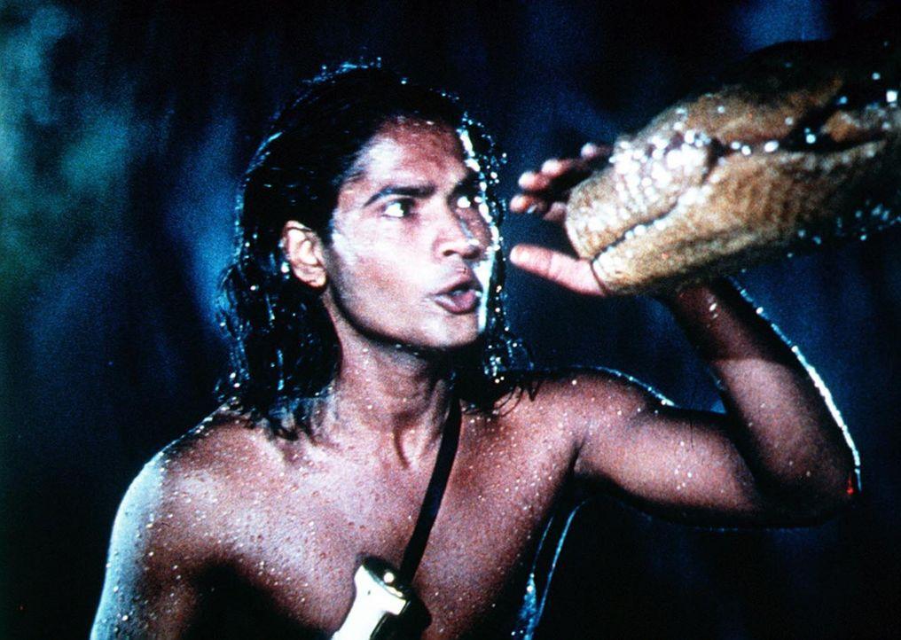 Die Schlange Kaa führt nichts Gutes im Schilde. Doch der Junge Mowgli (Sabu, l.) hat das Kriechtier längst durchschaut ... - Bildquelle: United Artists