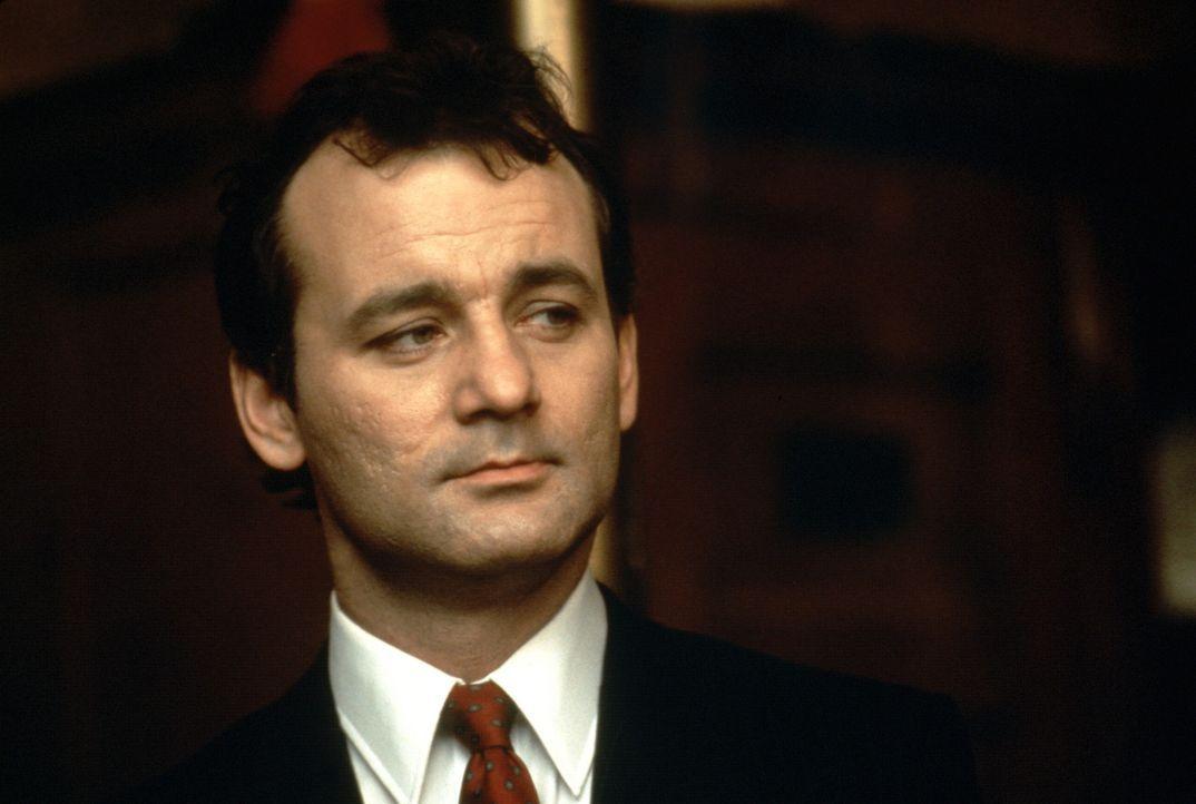 Geisterjäger Peter Venkman (Bill Murray) mag keine Geister. Da gefällt ihm die attraktive Dana schon besser, doch ausgerechnet sie wird von einem... - Bildquelle: Columbia Pictures