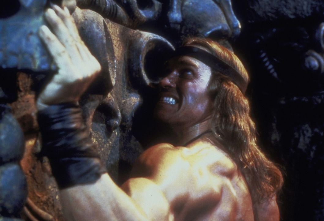 Keine Mauer ist für ihn unüberwindbar: Conan der Zerstörer (Arnold Schwarzenegger) soll im Auftrag der hinterhältigen Königin Taramis einen geh... - Bildquelle: Universal Pictures