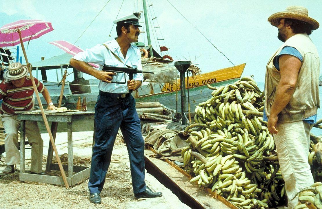 Banana Joe (Bud Spencer, r.) besitzt weder gültige Ausweispapiere noch eine Handelslizenz für seinen Bananenverkauf. Doch so leicht lässt er sich...