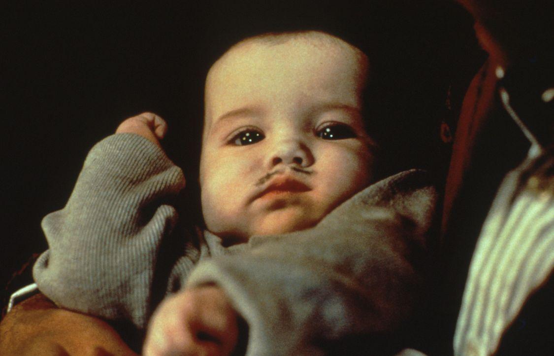 Seine Geschwister versuchen immer wieder, den kleinen Pubert Addams (Kristen Hooper) ins Jenseits zu befördern ... - Bildquelle: Paramount Pictures