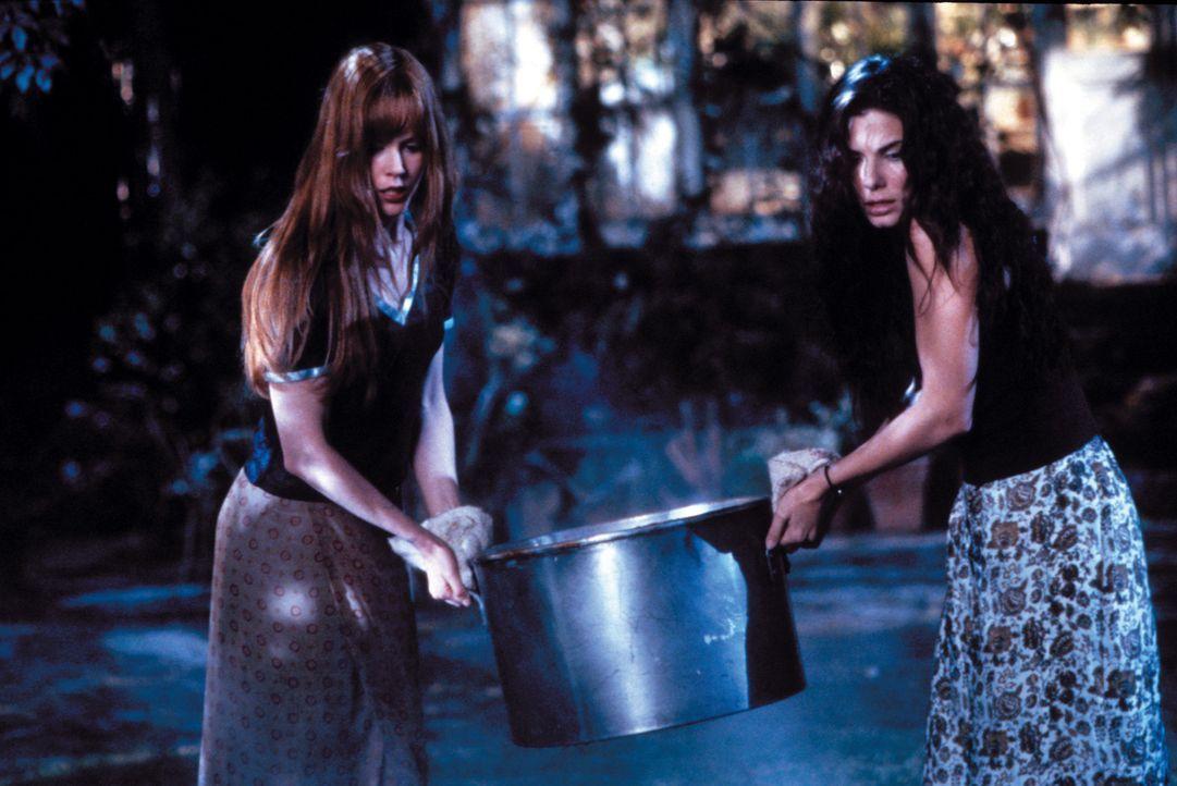 Die Schwestern Sally (Sandra Bullock, r.) und Gillian Owens (Nicole Kidman, l.) sind beide von klein auf mit weißer Magie aufgewachsen und leben se... - Bildquelle: Warner Brothers