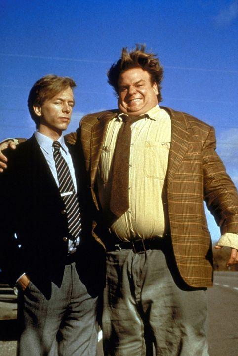 Als Duo sind sie unschlagbar: Richard (David Spade, l.) und Tommy Boy (Chris Farley, r) ... - Bildquelle: Paramount Pictures