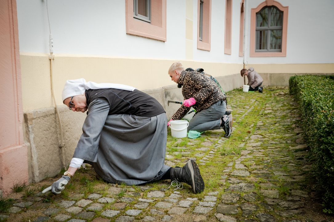 (v.l.n.r.) Schwester Maria; Johnny; Eli; - Bildquelle: Claudius Pflug Kabel Eins / Claudius Pflug