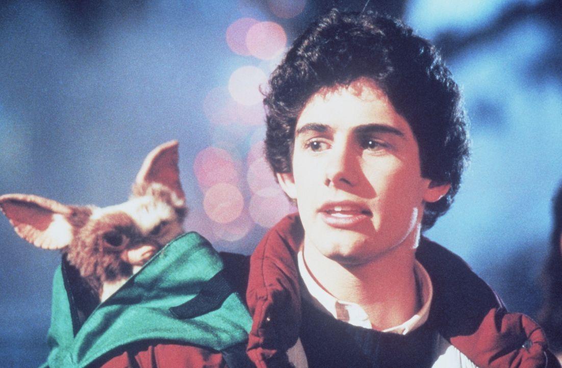 Es gibt drei wichtige Regeln, die Billy (Zach Galligan) unbedingt einhalten muss, wenn er den kleinen Gizmo als niedliches und putziges Haustier beh... - Bildquelle: Warner Bros.