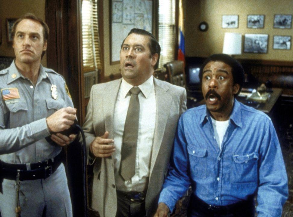 Nicht nur Harry (Richard Pryor, r.) wird von Skips verborgenen Reitkünsten total überrascht ... - Bildquelle: Columbia Pictures Corporation