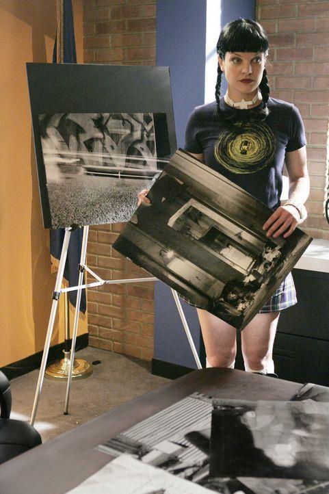 Abby (Pauley Perrette) sucht nach Hinweisen auf den Bildern des blinden Fotografen ... - Bildquelle: CBS Television