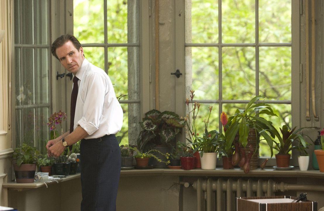 Justin Quayle (Ralph Fiennes), Diplomat im britischen Hochkommissariat in Nairobi und begeisterter Hobbygärtner, führt ein beschauliches Leben - b... - Bildquelle: Epsilon Motion Pictures