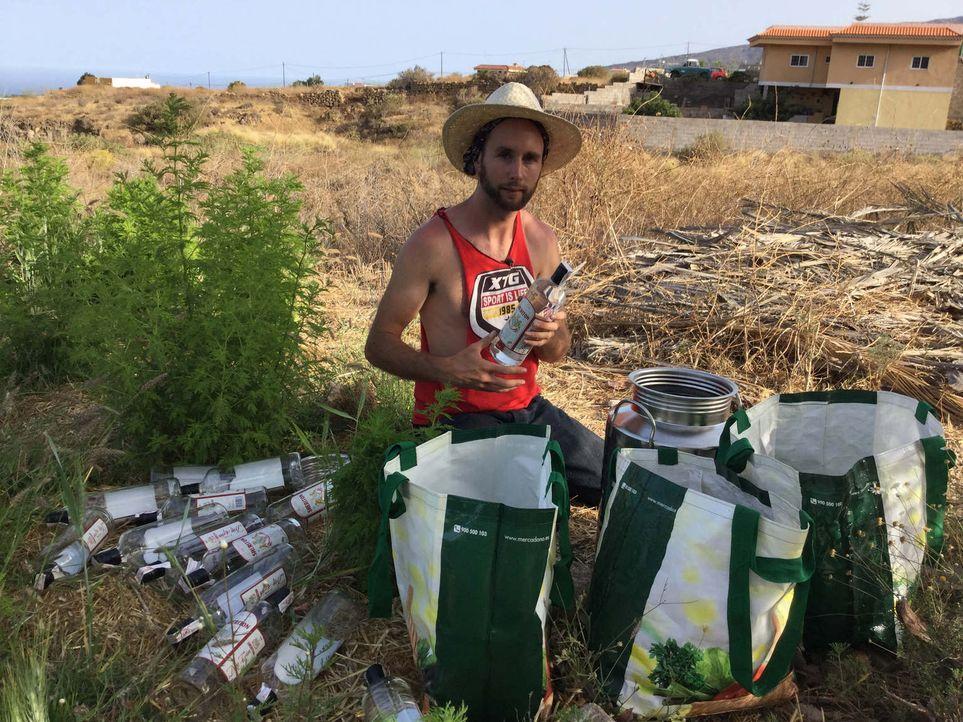 """Mit """"Baum-Sperma"""" zum Selfmade-Millionär? Der 29-jährige Startupper Curro Cachinero versucht, mit seinem """"Superfood"""", einem Mix aus nährstoffreichen... - Bildquelle: kabel eins"""
