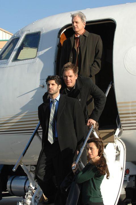 Gibbs (Mark Harmon, oben), Tony (Michael Weatherly, 2.v. oben) und Ziva (Cote de Pablo, unten) machen einen Waffenhändler (Assaf Cohen, 2.v. unten)... - Bildquelle: CBS Television