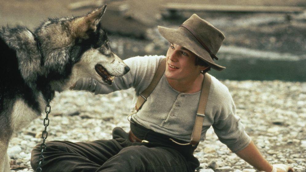 Wolfsblut - Bildquelle: Walt Disney Pictures