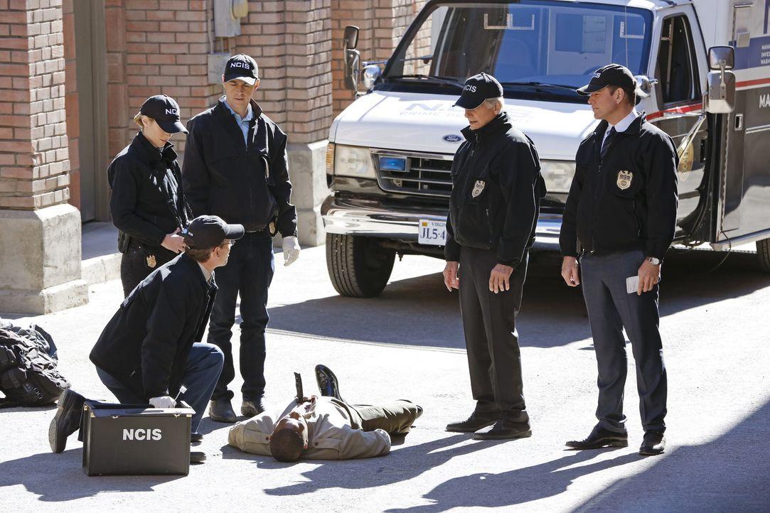 Bei den Ermittlungen in einem Mordfall, ahnen Gibbs (Mark Harmon, 2.v.r.), McGee (Sean Murray, 2.v.l.), Tony (Michael Weatherly, r.), Bishop (Emily... - Bildquelle: Robert Voets CBS Television