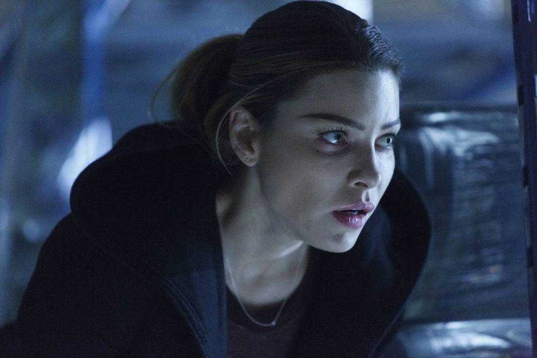 Dan weiht Chloe (Lauren German) in seine früheren Machenschaft ein, als ihm bewusst wird, dass Lucifer tatsächlich für einen Mord verantwortlich gem... - Bildquelle: 2016 Warner Brothers