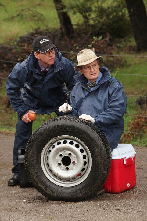 Als sie einen Leichnam von einem Tatort abtransportieren wollen, werden Ducky (David McCallum, r.) und Jimmy (Brian Dietzen, l.) von Fremden gezwung... - Bildquelle: CBS Television
