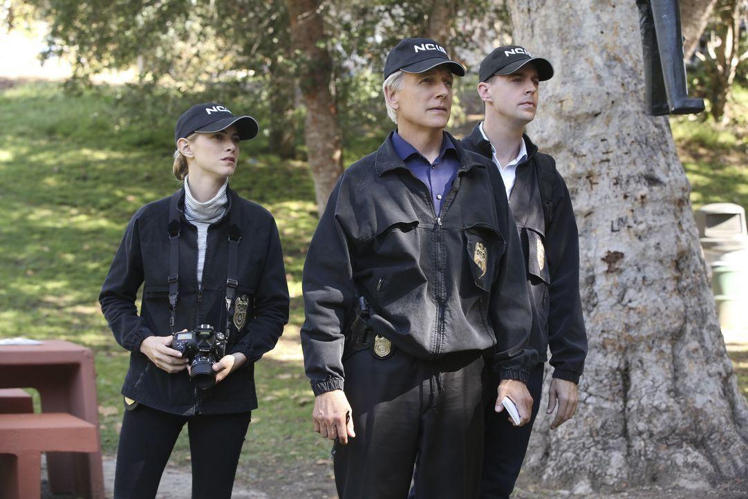 Ein Unteroffizier wurde ermordet und da der Fall Parallelen zu einem Serienkiller aufweist, muss das Team um Gibbs (Mark Harmon, M.), Bishop (Emily... - Bildquelle: Monty Brinton CBS Television / Monty Brinton
