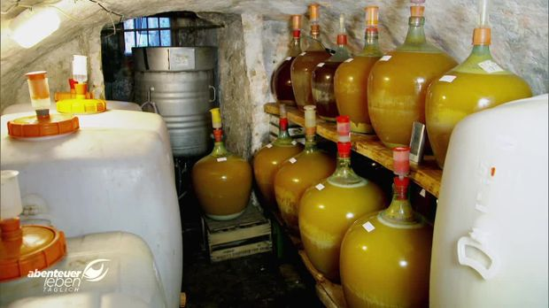 Abenteuer Leben - Abenteuer Leben - Donnerstag: Apfelwein Vs. Cidre