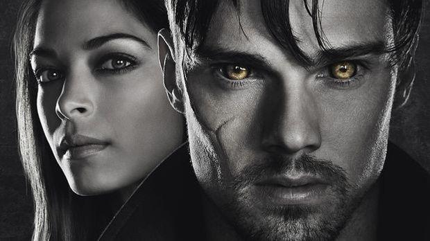 Beauty-and-the-Beast-Allgemeine-Bilder-02-2012-The-CW-Network-LLC