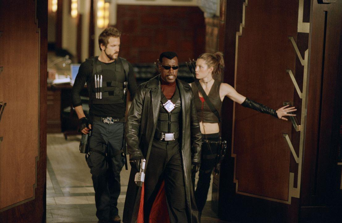 Gemeinsam versuchen Vampire und ihre Jäger, dem überaus gefährlichen Grafen Dracula den Garaus zu machen: Blade (Wesley Snipes, M.), Abigail Whistle... - Bildquelle: New Line Cinema