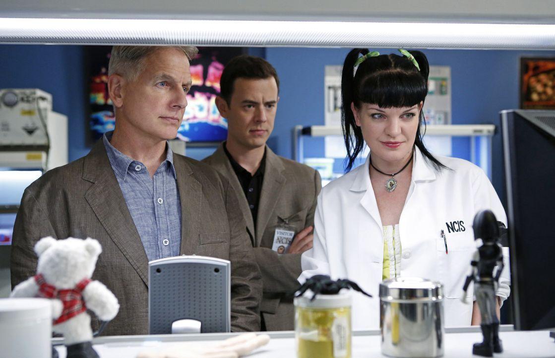 Ein neuer Fall mit einem Toten verändert Parsons (Colin Hanks, M.) Perspektive auf Gibbs (Mark Harmon, l.), Abby (Pauley Perrette, r.) und das restl... - Bildquelle: CBS Television