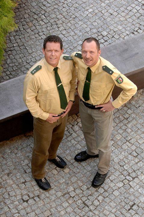 Toto (l.)  und Harry (r.) sind wieder unterwegs. - Bildquelle: kabel eins