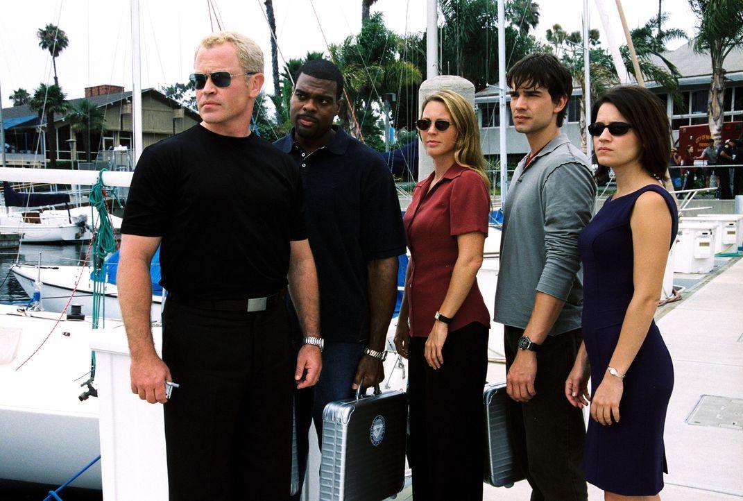 Das Team (Troy Winbush, 2.v.l., Kelli Williams, M., Christopher Gorham, 2.v.r. und Anna Belknap, r.) um Dr. Stephen Connor (Neal McDonough, l.) wird... - Bildquelle: CBS Television