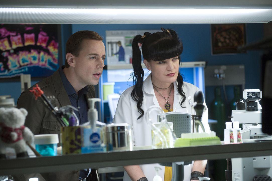 Das Team um McGee (Sean Murray, l.) und Abby (Pauley Perrette, r.) kämpft gegen die Zeit, um einen geeigneten Knochenmarkspender für einen im Sterbe... - Bildquelle: Neil Jacobs CBS Television
